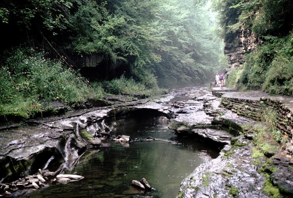 Watkin Gorge