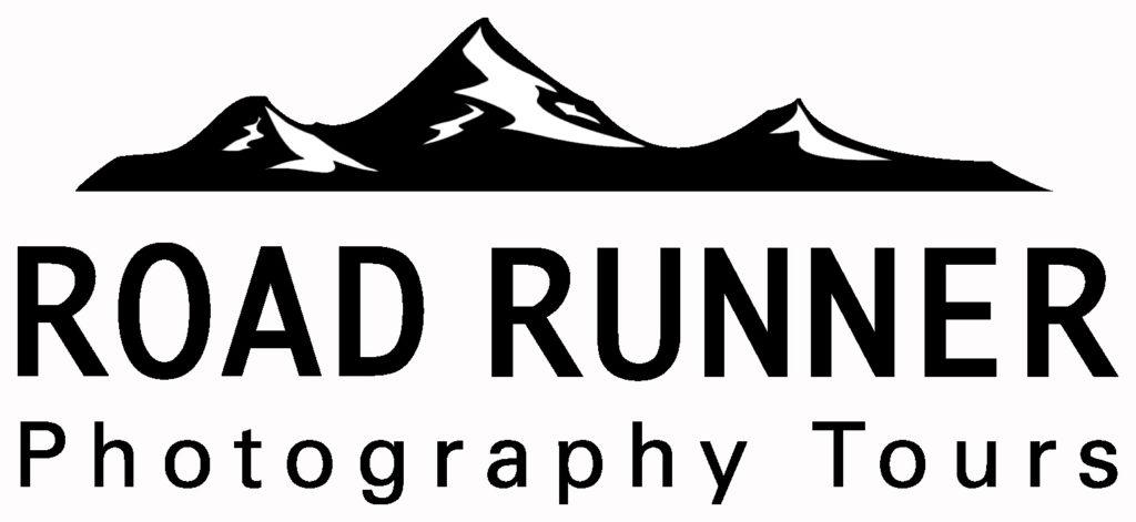 Road-Runner-1024x471.jpg