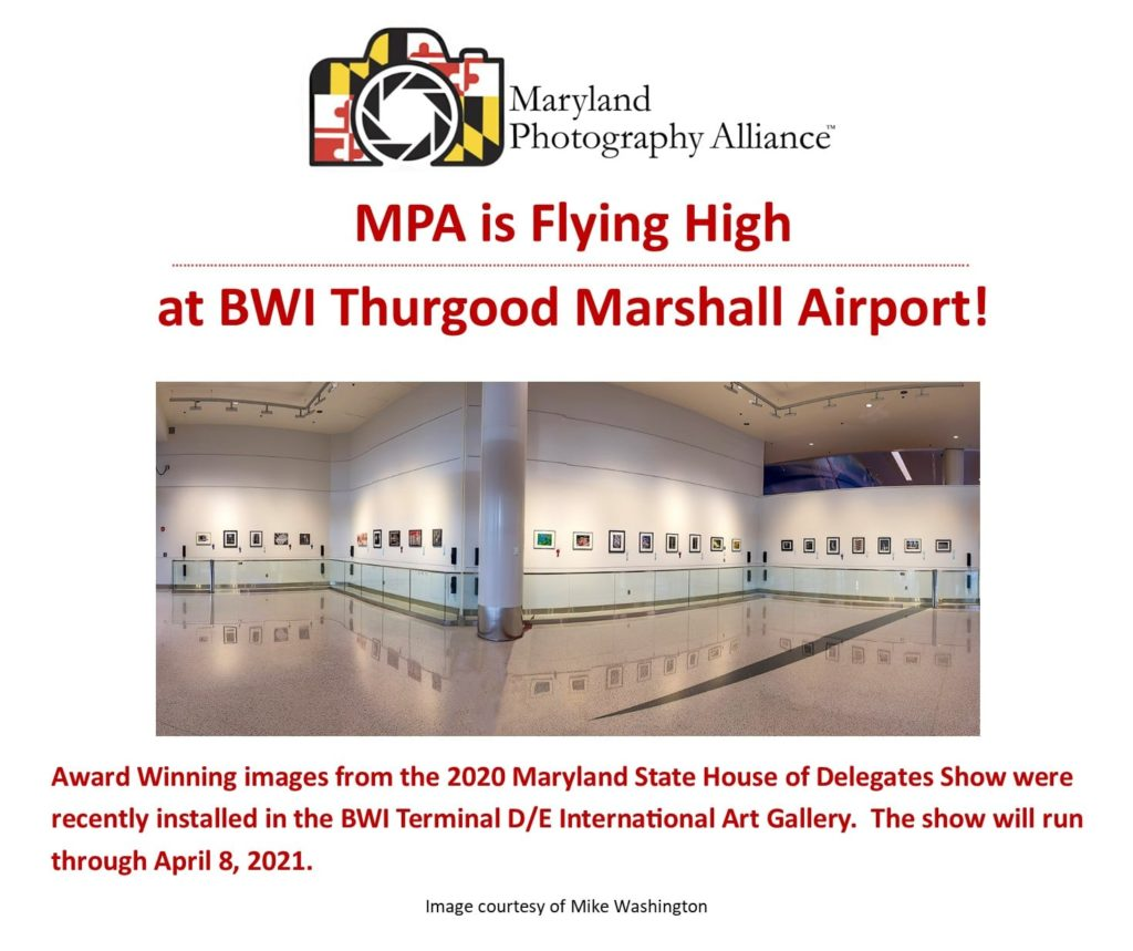 MPW-BWI-Exhibit-1024x859.jpg