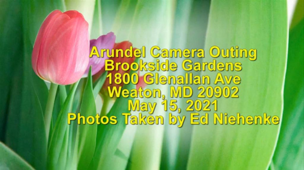 20210515-Field-Trip-Brookside-Gardens-1024x572.jpg