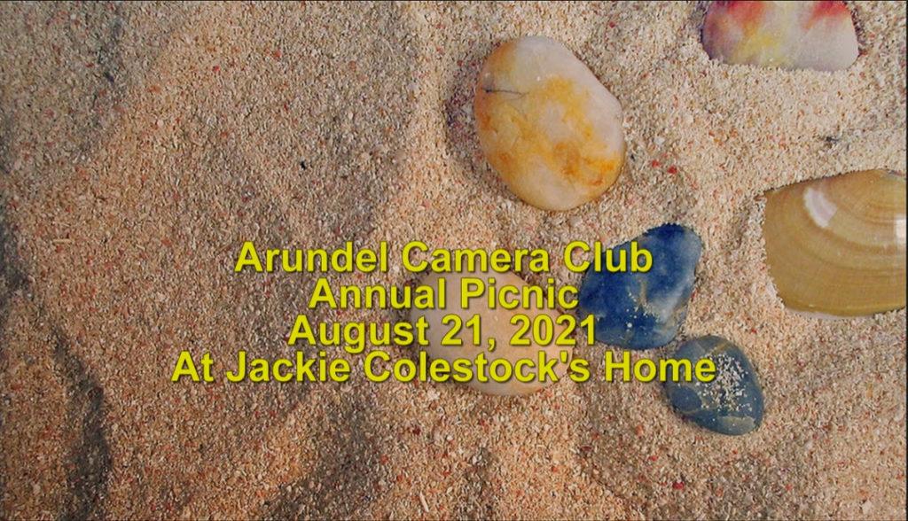 picnic-video-1024x588.jpg
