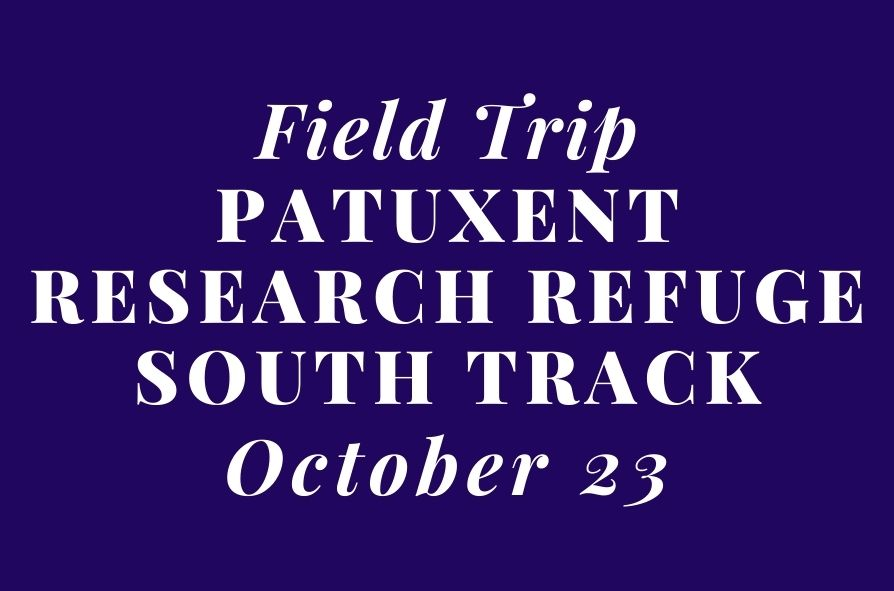 Field-Trip-Patuxent-Research-Refuge-South-Track.jpg
